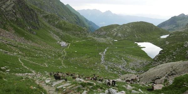 Auf dem Pfad oberhalb der Oberkaser Hütte