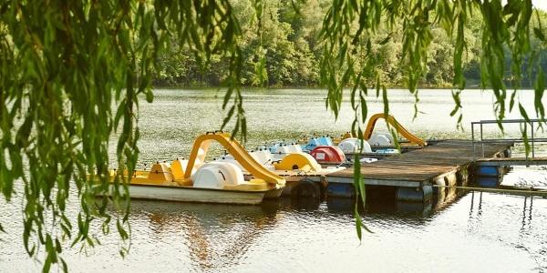 Wassersport am Donausee in Weitenegg