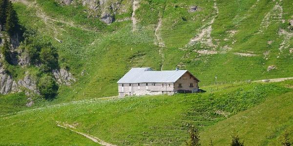 Obere Wilhelmine Alpe auf dem Weg zum Siplinger Kopf