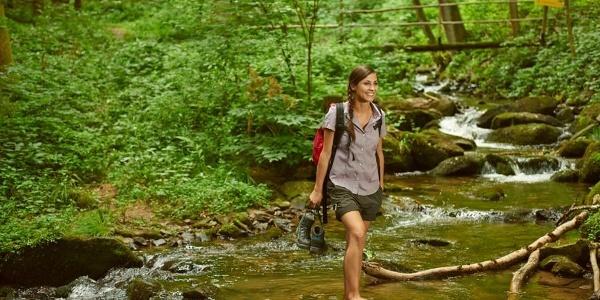 Wandern in der Steinbachklamm zwischen Marbach und Maria Taferl