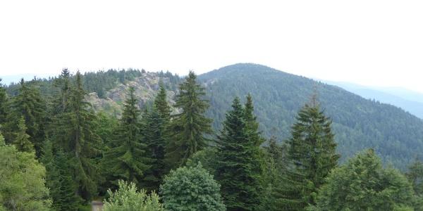 Blick auf das Steinbühler Gesenke und den Großen Riedelstein