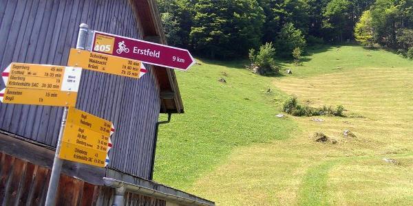 Start bei der Bergstation Wilerli über den Weg durch die Wiese