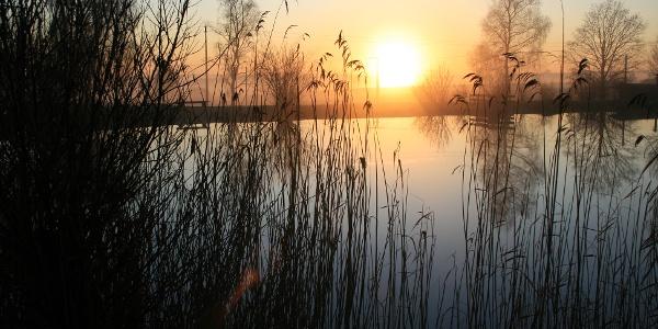Fischweiher im Gewann Reißer bei Sonnenaufgang