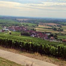 Blick vom Zimmerberg auf Oberhofen
