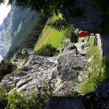 Der Klettergarten Schrofenwies in Lechleiten, im Hintergrund der Biberkopf (2015-07-25)