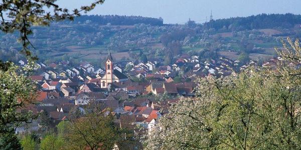 Blick auf Unteröwisheim