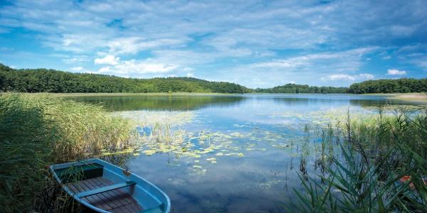 Einsamer See mit Ruderboot