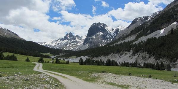 Bei der Alp Sprella