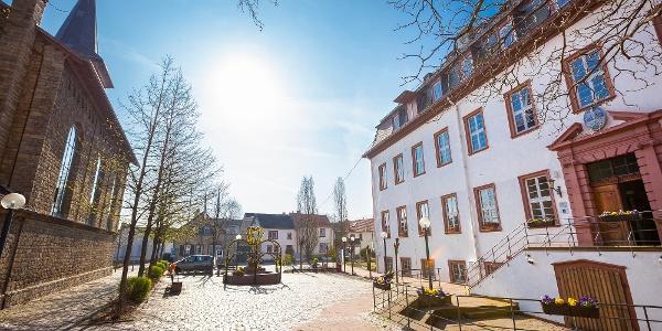 Leininger Schlösser in Guntersblum