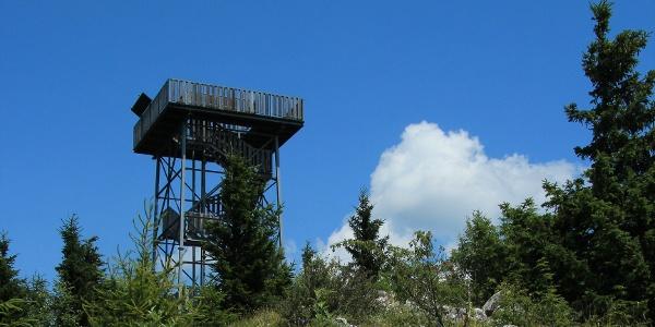Aussichtsturm Hohe Wand (Copyright: Wikimedia Commons_KarlGruber)