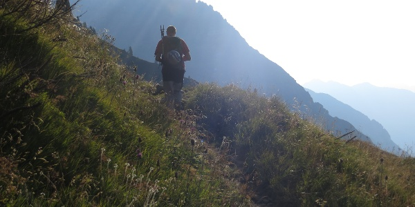 Über bequemen Steig bis zur Querung des Pflerscher Höhenweges