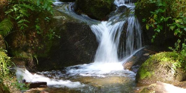 Höllbach-Wasserfall