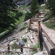 Trail-Abfahrt (wers kann!)