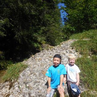Wandern im Wald und freien Feld bei der Scheidwang-Alpe.