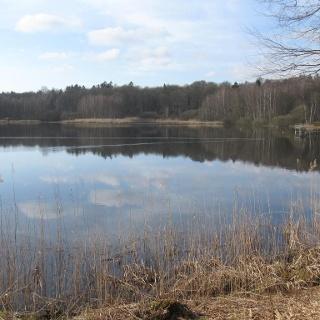Naturschutzgebiet Priortech-Sachsenstein