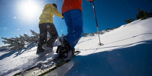 Schneeschuhwandern auf der Rax