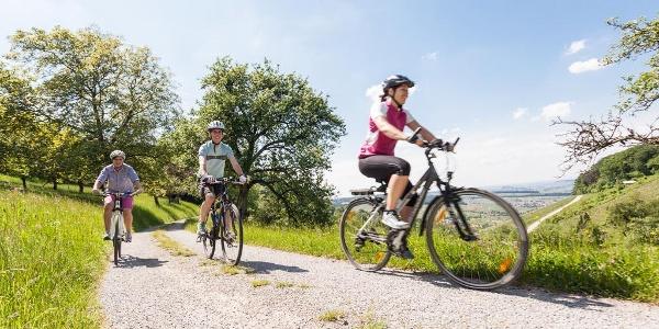 Radfahren in den Löwensteiner Bergen
