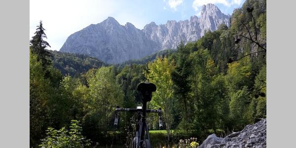 Griesenau