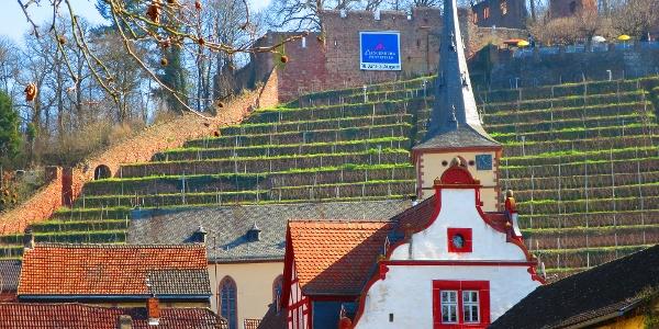 Burgruine Clingenburg