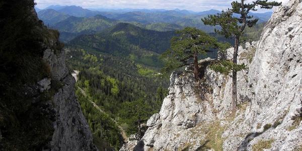 Abstieg von der Gauermannhütte