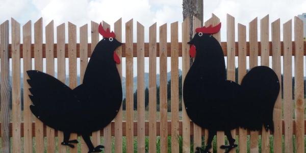 Das berühmte Hühnerpaar findet sich auch am Haldeneck oberhalb vom Vogt auf Mühlstein