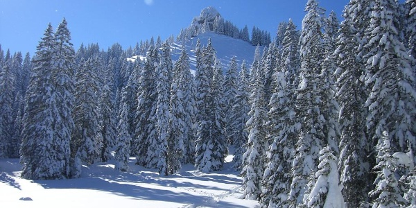 Schneeschuhwanderung Laber - Ettaler Manndl