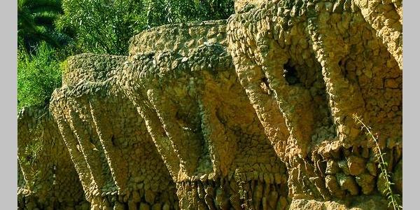 Barcelone - Parc Güell, palmes