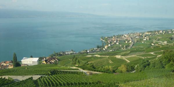 Anreise mit der Bahn, Blick auf den Genfer See