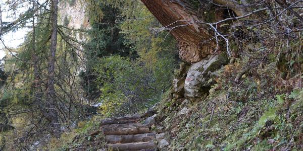 Der Steig mit Holzstufen