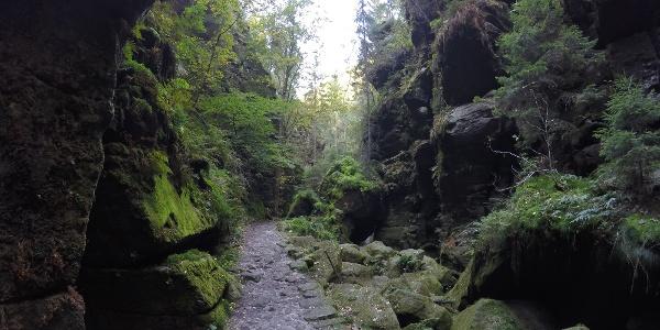 traumhaft idyllische  Wege im Uttewalder Grund