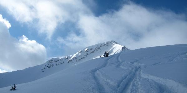Abfahrt von der Scheinbergspitze in frischem Pulverschnee