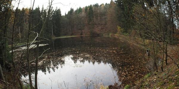 Der Mühlenteich bei Grafschaft im Herbst