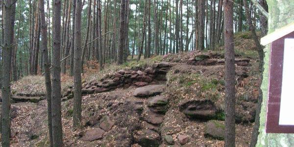 Überrester der Karolingischen Fliehburg am Burghalder