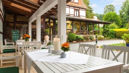Landhotel Der Schwallenhof: Terrasse