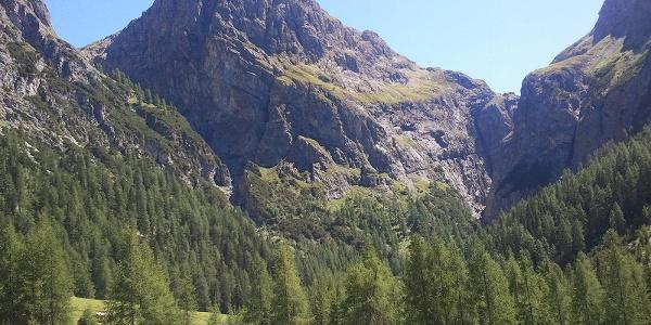 Blick von der Alp Uina Dadaint in Richtung Uina-Schlucht