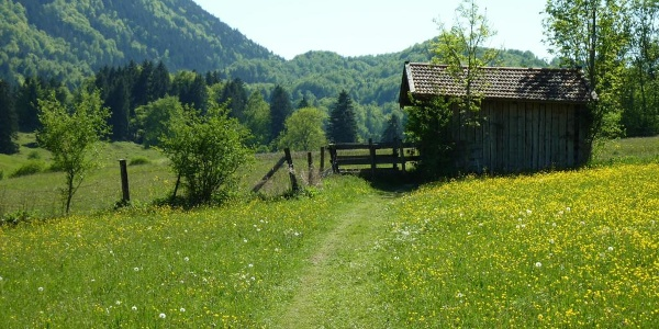 Fernwanderweg - Meditationsweg, 5. Etappe - Fußweg bei Ohlstadt