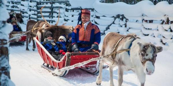 Rentierschlitten fahren in Rovaniemi