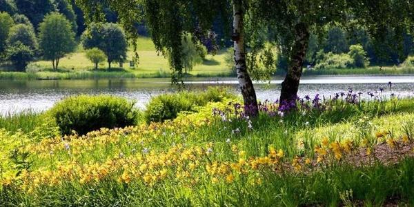 Ufergarten am See