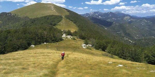 Budakovo brdo s Prikinutog brda