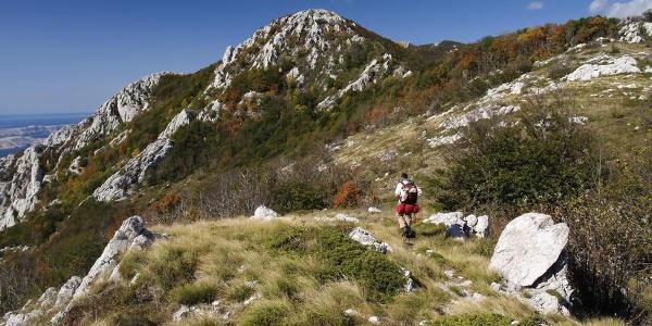 Na putu između Panosa i Šugarske dulibe
