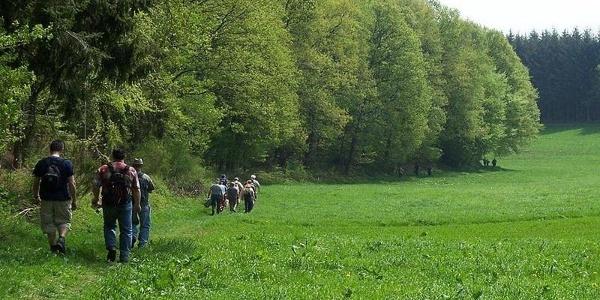 Wanderer auf dem Waldsaumweg