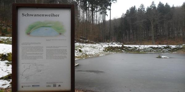 Schwanenweiher im Winter