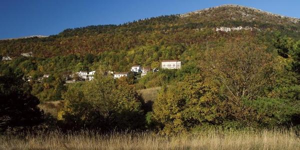 Brest i Žbevnica