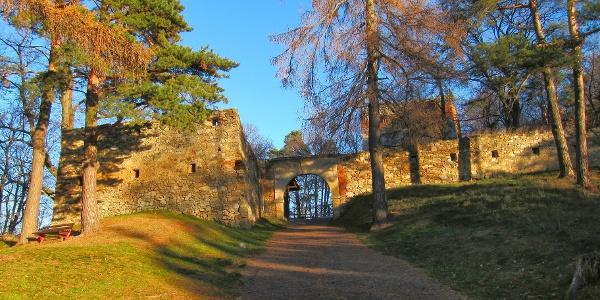 Ruine Landsee (01.12.2013)