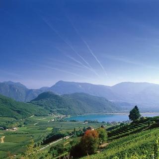 Central Wine Route, Wine & bike: Pinot Blanc and Schiava