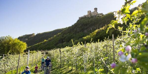 Burg Hocheppan bei Missian/Eppan