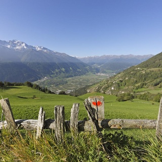 Panoramic view from the Venosta Valley High Mountain Trail