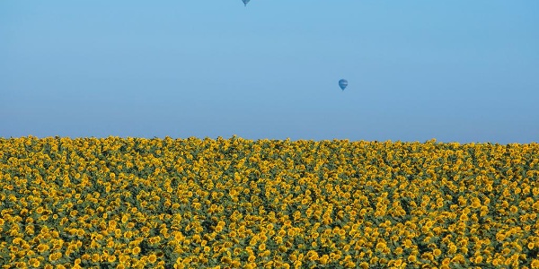 Heißluftballons in Galiläa
