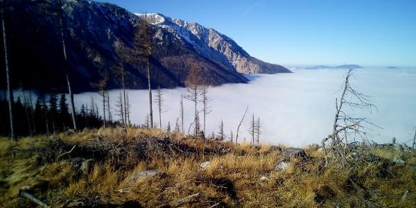 Schneeberg und Nebel, nochmal weil es so schön ist