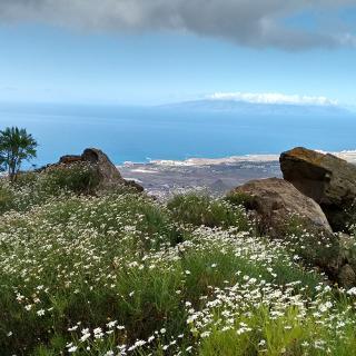 Blick auf La Gomera